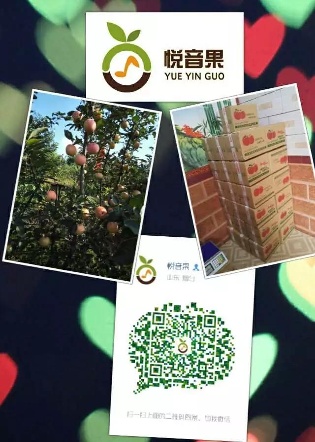 这是第3张正宗烟台苹果原产地 支持一件代发 全国包邮的货源图片