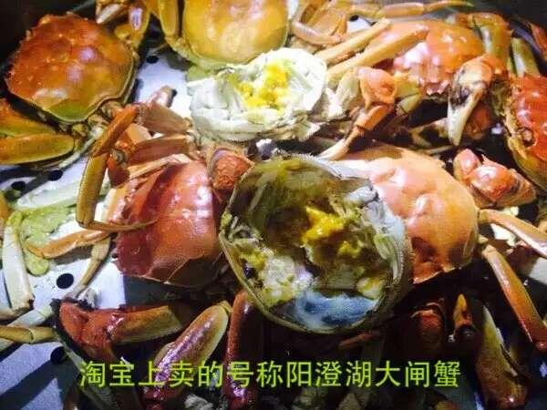 这是第2张阳澄湖大闸蟹招商加盟,招各类网店微商代理的货源图片