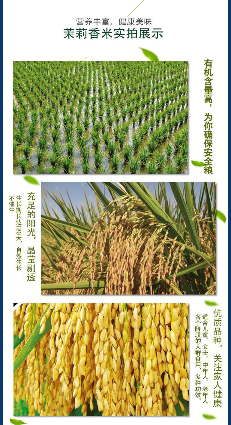 这是第9张柬埔寨【进口】'沃香情'茉莉香米一件代发的货源图片