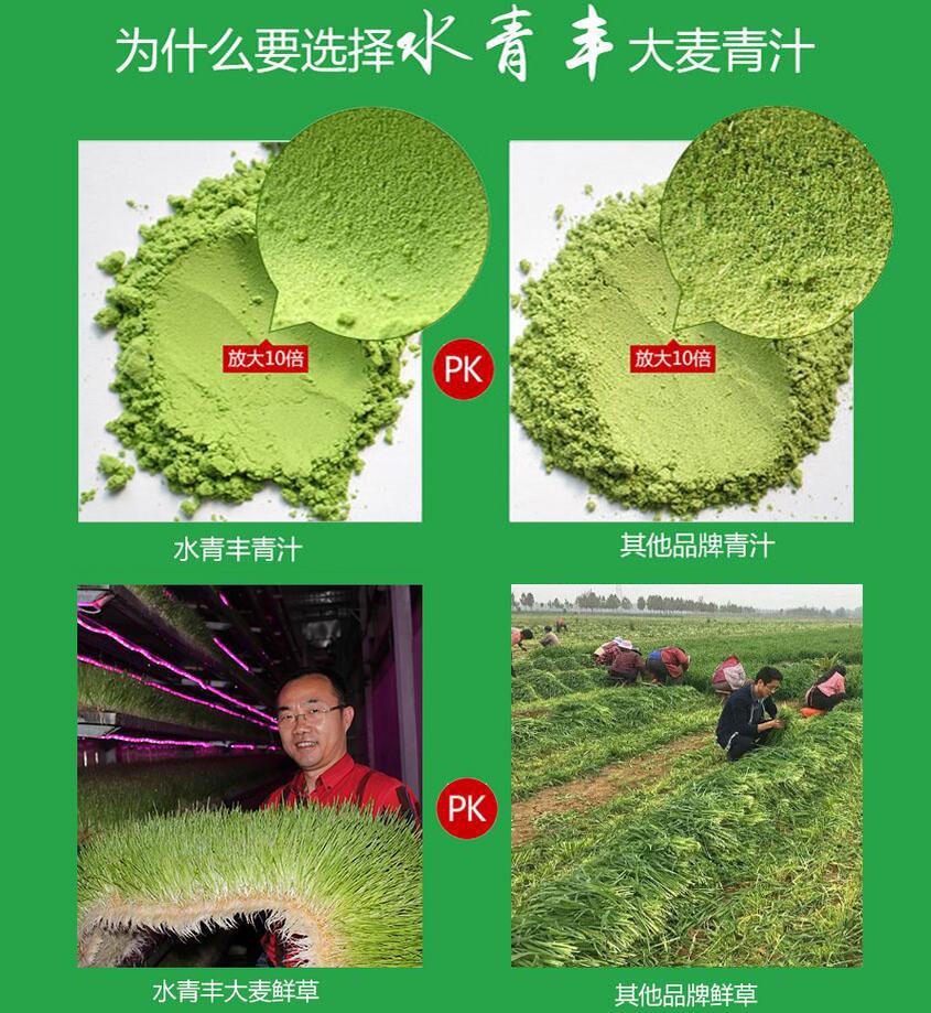 这是第3张大麦若叶青汁怎么做?大麦若叶青汁赚钱么?的货源图片